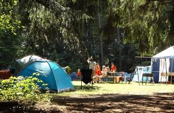 Táboroztatás